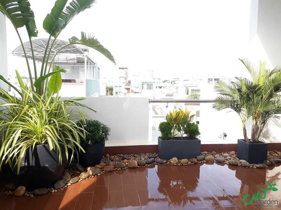 Dịch vụ thi công sân vườn tại Đà Nẵng