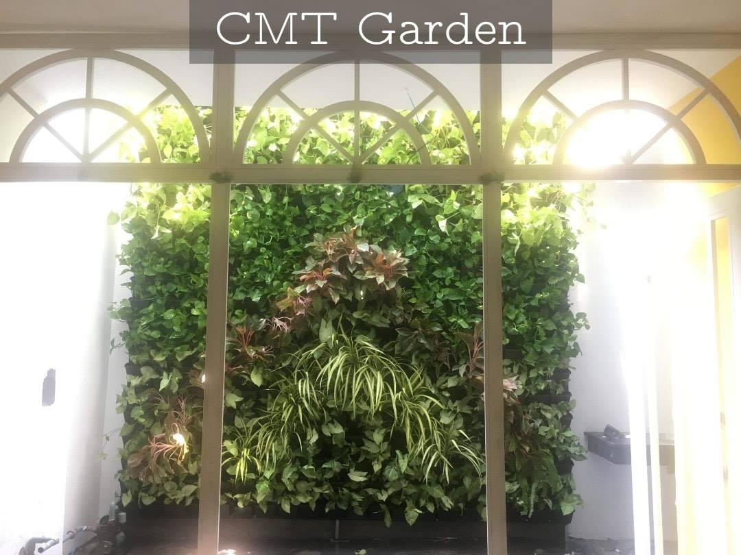Dịch Vụ Thi Công Và Thiết Kế Vườn Tường Đứng Tại Đà Nẵng Chuyên Nghiệp